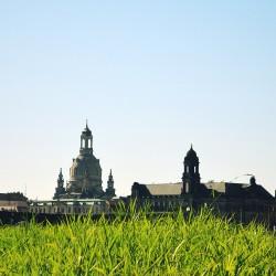 Dresden-Silhouette