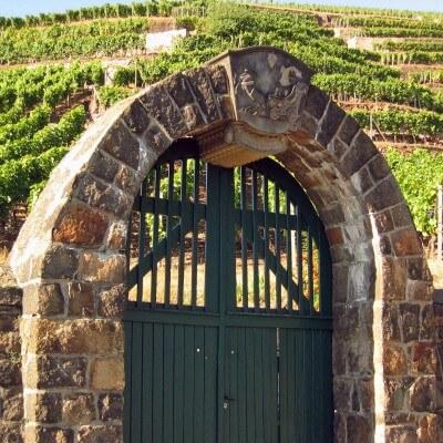 Tagesausflug Sächsiche Weinstrasse