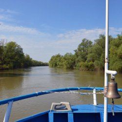 Donaudelta bearb 037