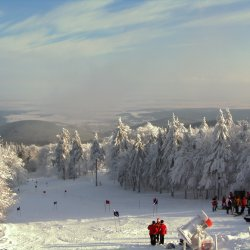 Winter am Inselsberg(0)